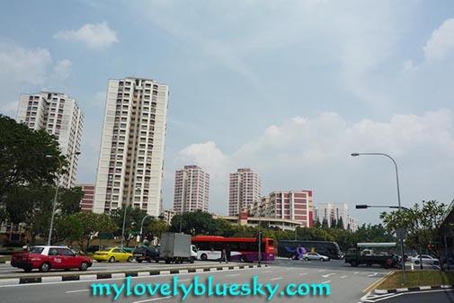 20090213_singapore_04011