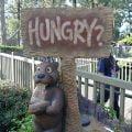饮食篇 : 吃在美国迪斯尼乐园
