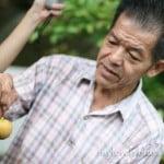 槟城土产:義合豆蔻廠