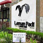 兰卡威景点:Laman Padi Langkawi