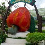 普吉岛土产:Sri Bhurapa Orchid Co., Ltd