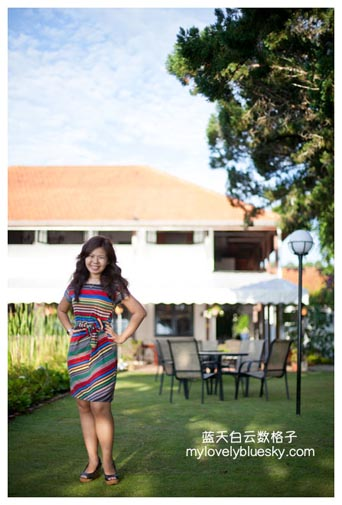 Coloured Stripe Dress with Side Waist Tie