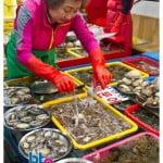 韩国釜山旅游:札嘎其市场 Jagalchi Market
