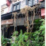 马六甲美食:The Baboon House