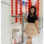 Whitesoot: Darling Organza Lace Skirt