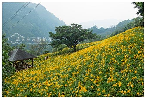 20150513_Taiwan-Tai-Chung_0530