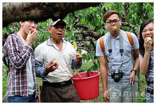 台中新社景点:新峰休闲农场