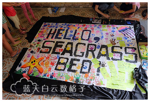 20150802_Project-Seagrass_0160