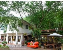 台中新社旅游 : 桃李河畔和橄榄树梦想园地