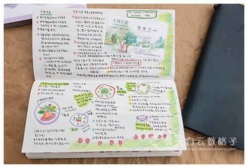 20150922_blue-edition-traveler's-notebook_0010