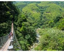 台湾南投旅游 : 竹山天梯(梯子吊桥)