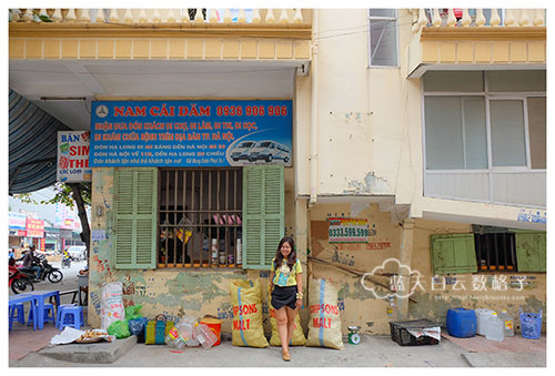 20151104_Ha-long-bay-Hanoi-by-Victoria-Tourism_0675