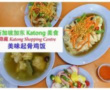 新加坡加东 Katong 美食 | 美味起骨鸡饭 Delicious Boneless Chicken Rice
