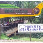 砂拉越古晋景点:实蒙古野生动物护育中心 Pusat Hidupan Liar Semenggoh