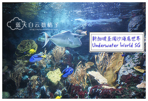 20160622_Underwaterworld_0069