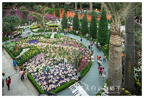 Gardens by the Bay: Lilitopia @Flower Dome