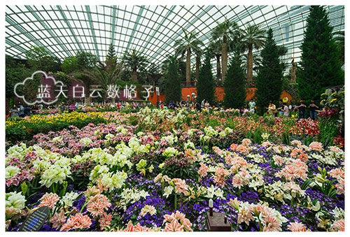20160618_Garden-By-The-Bays_0624