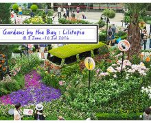 Gardens by the Bay: Lilytopia @Flower Dome(附有360度Lilytopia 全景图)