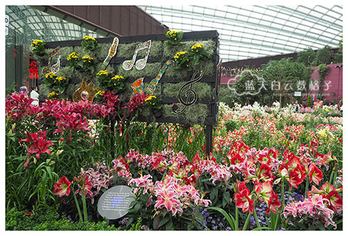 20160618_Gardens-by-the-Bay_0412