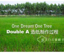 1Dream1Tree: Double A 造纸制作过程 (文末有奖游戏3天2夜游泰国曼谷)