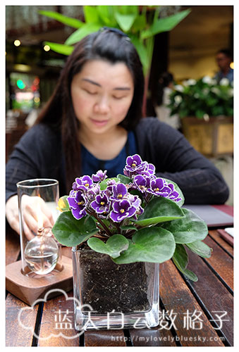 槟城 Batu Ferringhi 美食: Ferringhi Garden