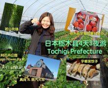 日本栃木县Tochigi Prefecture 4天3夜游