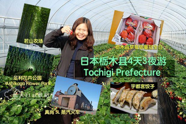 20170118_Tochigi-Prefecture_1058