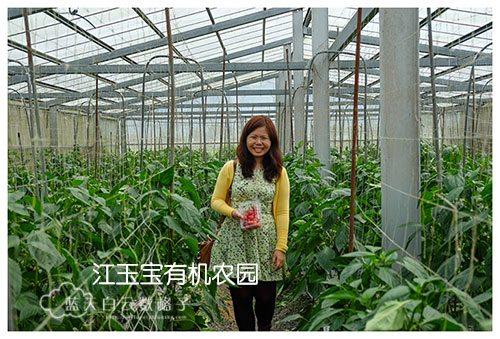 20170220_Hua-Lian-Tai-Tung-Taipei_1215