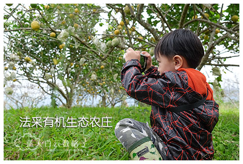 20170221_Hua-Lian-Tai-Tung-Taipei_0622