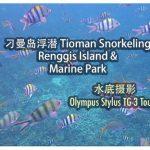 Olympus Stylus TG-3 Tough: 刁曼岛浮潜 Renggis Island & Marine Park Snorkeling