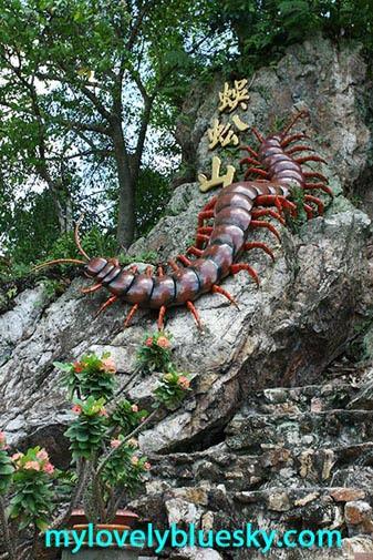 蜈蚣山的巨型蜈蚣
