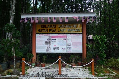 20090912_Taiping_0169