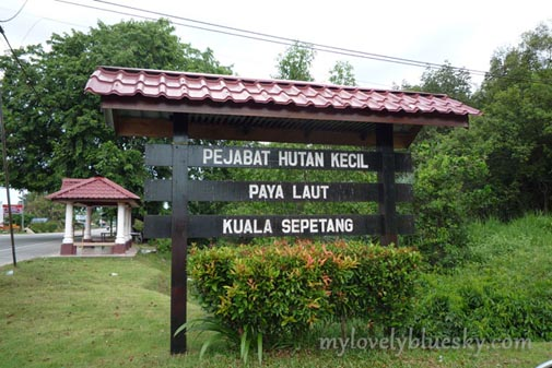 20090912_Taiping_0663