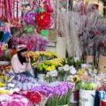 金马伦景点:Vegetable Market