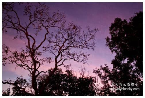 20130826_Australia_Northern_Territory_0851