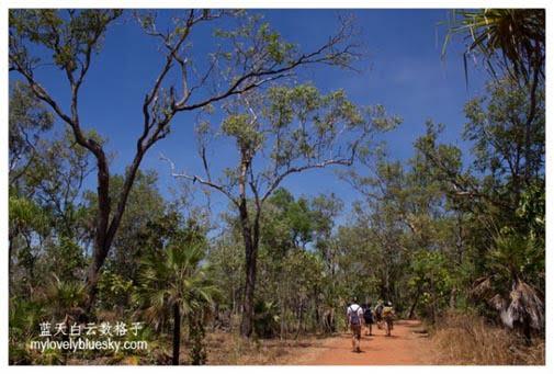 20130827_Australia_Northern_Territory_3770