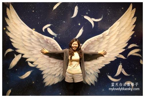 韩国济州岛旅游:Alive Museum