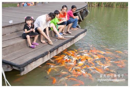 Ocean Eco Park