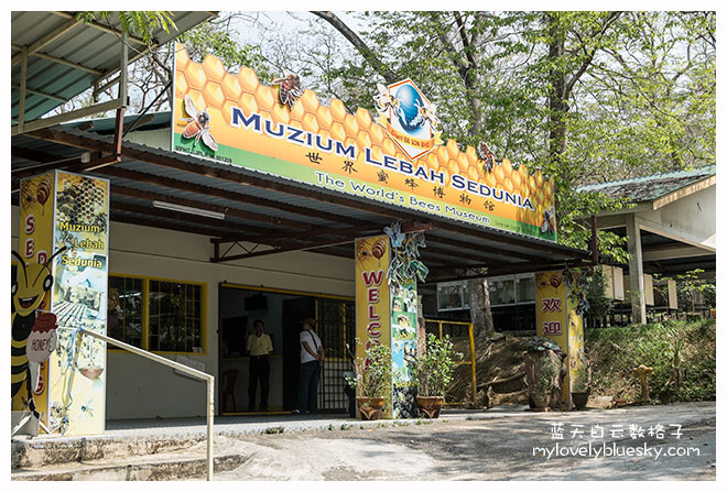 The World's Bee Museum
