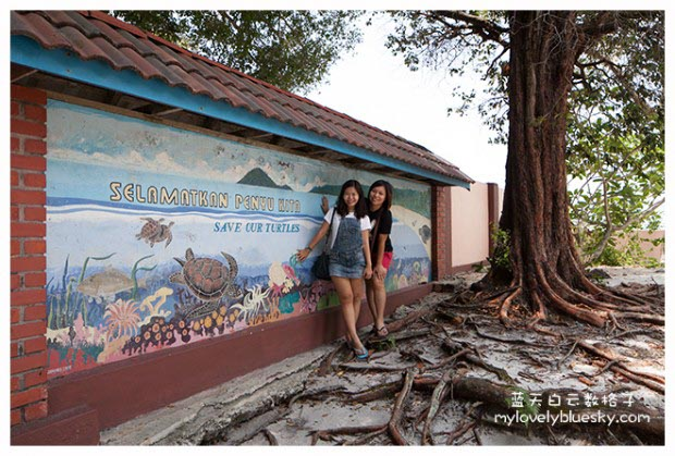 Turtle Conservation And Information Center