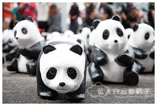 槟城站:1600熊猫游大马 Pandas on Tour
