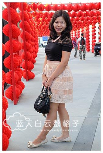 Darling Organza Lace Skirt