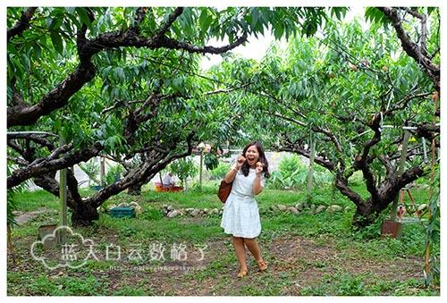 20150512_Taiwan-Tai-Chung_0956