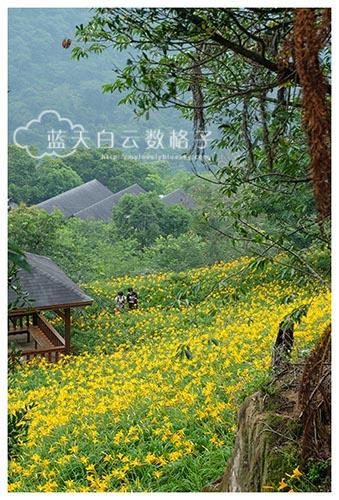 20150513_Taiwan-Tai-Chung_0536