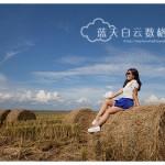 雪兰莪适耕庄旅游:稻田卷卷草
