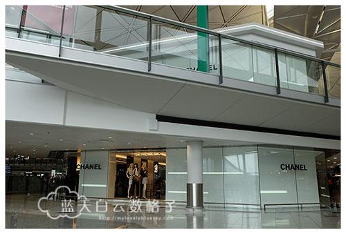 台湾新社南投5天4夜完结篇