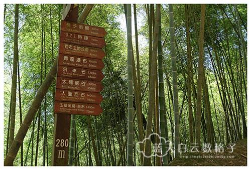 台湾南投旅游