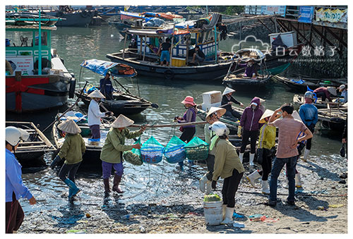 20151102_Ha-long-bay-Hanoi-by-Victoria-Tourism_1633