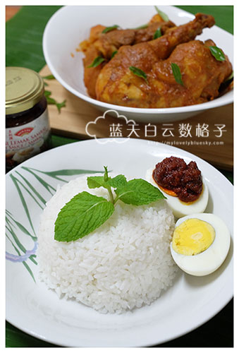 Dollee 多利牌 :Chicken Curry Paste 咖喱鸡即煮酱料