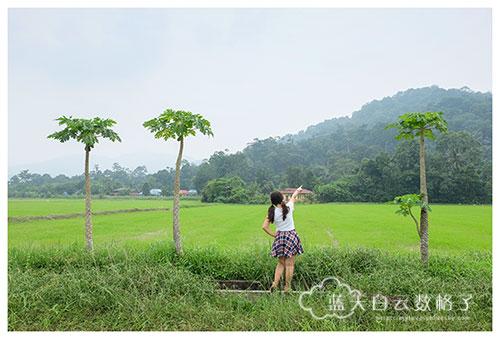 20151018_Balik-Pulau_0082